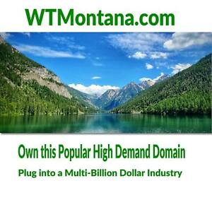✅ WTMontana.com - Premium Keyword Domain - Brandable Montana Products & Service