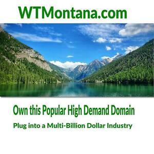 WTMontana-com-Premium-Keyword-Domain-Brandable-Montana-Products-amp-Service