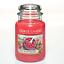 Yankee-Candle-Housewarmer-Grosses-Glas-Komplettsortiment-623-g-Duftkerze Indexbild 50