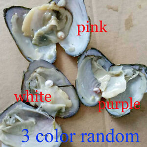 new product 4e2af 1f07a Image is loading NEW-6-7mm-Individual-Wrapped-Freshwater-Oyster-with-