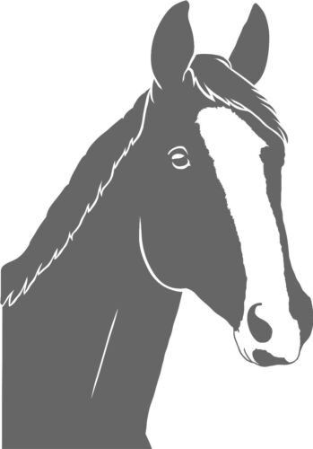 Horse Horses Stickers Wall Tattoo Sticker Rear Window Car Mirror