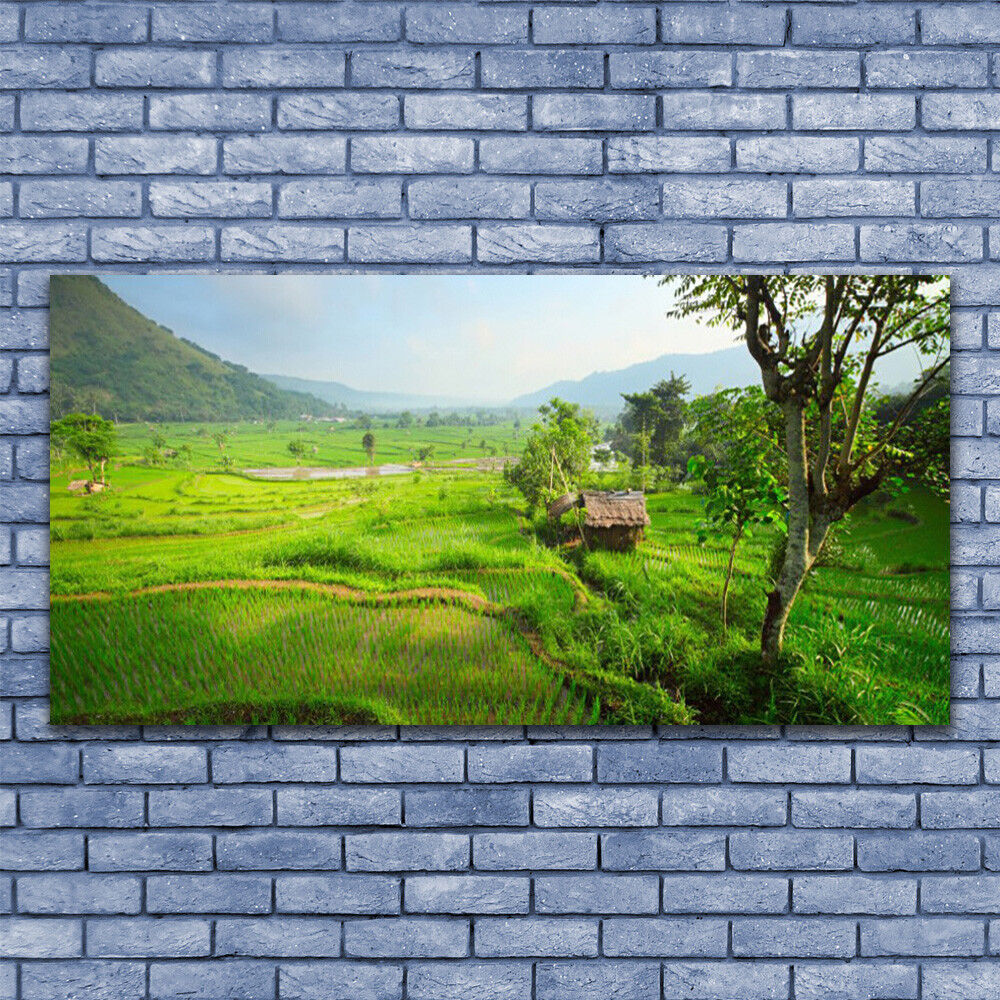 Glass print Wall art 140x70 Image Picture Meadow Nature