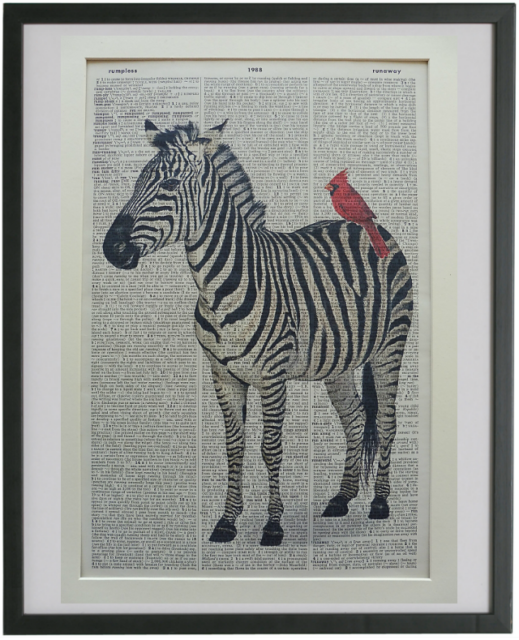 Zebra Print No.722, africa jungle prints, housewarming gifts, red cardinal bird