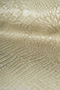 Albino-CROC-Leather-cowhide-remnant-Appx-5-sqft-E101J10-6