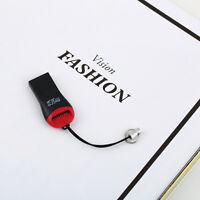 USB 2.0 Mini Micro SD T-Flash TF M2 M 2 Memory Card Reader 2GB 4GB 8GB 16GB FO