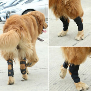 1-Pair-Dog-Leg-Brace-Hock-Joint-Knee-Support-Rear-Therapeutic-Pet-W-CPT