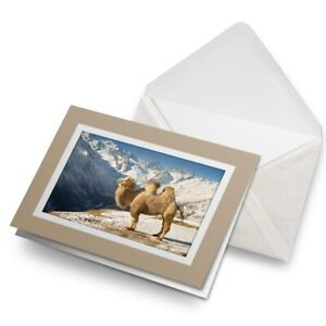 Greetings-Card-Biege-Camel-in-Caucasus-Russia-Mountains-15718