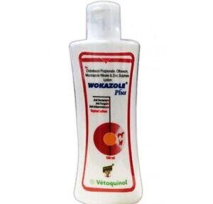 Wokazole Plus Anti Inflammatory Bacterial Fungal Topical