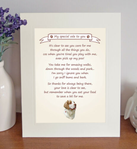 Clumber Spaniel Thank You FROM THE DOG Poem 8 x 10 Picture//10x8 Print Fun Gift