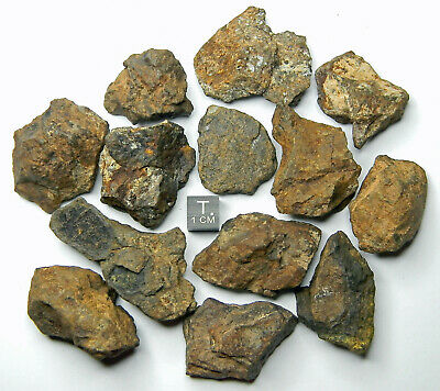 Amazing gift design statuette Saharan Desert NWA Stony Meteorite 4,15 g Great for Collectors Space NonCom Ordinary Chondrites