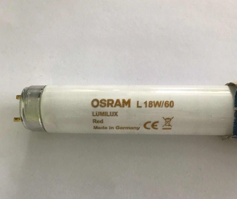 presentando tutte le ultime tendenze della moda OSRAM OSRAM OSRAM LUMILUX 2 FT (ca. 0.61 m) 18 W Rosso Coloreata Fluorescente Tubo (col 60) L18W 60 - Confezione da 5  memorizzare
