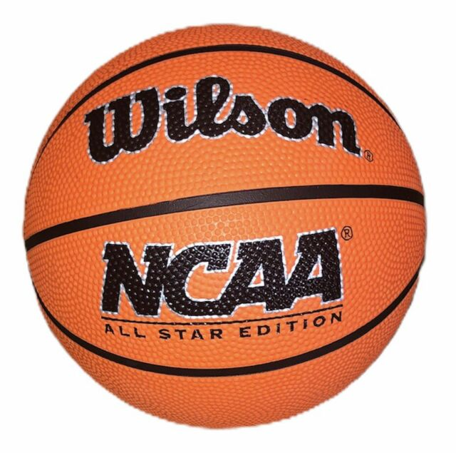 Wilson Mini Micro BasketBall