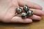 BD142 Nepal Handmade Beads Tibetan Brass Colorufl Stone 16mm Ball Beads 4 PCS