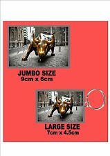 The Wall Street Bull New York City Key Ring & Fridge Magnet Set