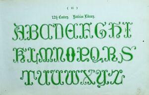 1865 Ornamental Alfabeto Estampado ~ 12th Siglo Bodleian Biblioteca