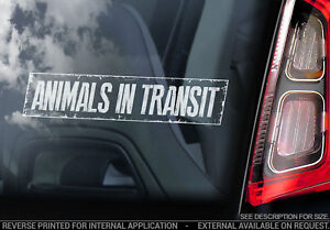 Animals in Transit - Car Window Sticker - Pet Cat Dog Rabbit Decal Sign - V02
