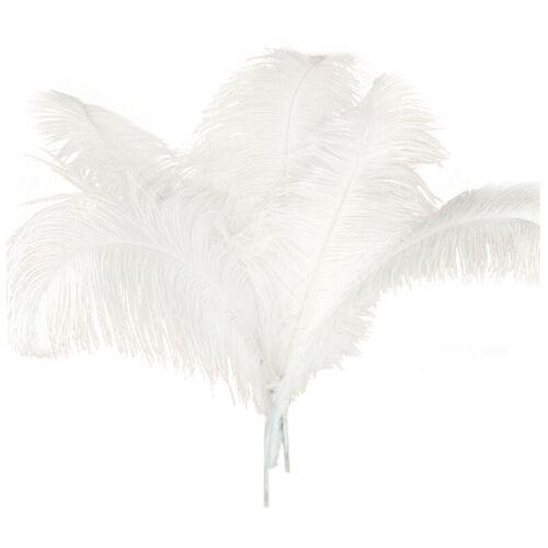 2X 10 Pc Natürliches Strauß-Federn-Hochzeitsfest-Dekorations-Weiß 50-55Cm Y9 T4W