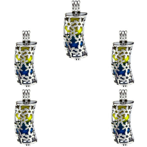 5X-K312 Hollow Tube Perles Cage huiles essentielles Diffuseur médaillon pendentif