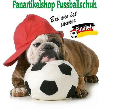 fanartikelshop-fussballschuh