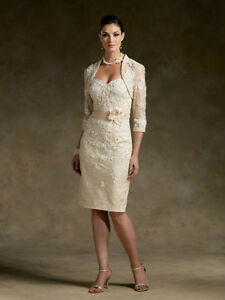 New-Short-champagne-Mother-of-the-Bride-dress-Free-Jacket-Stock-Sz-8-10-12-14-16