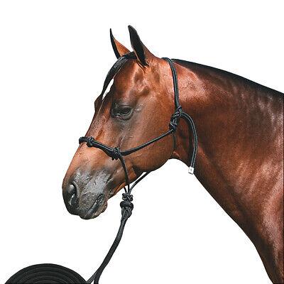 Black Turquoise Professional Choice Western Horse Nylon Halter Rope 10Ft Lead U