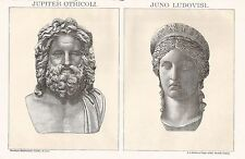 B0209 Jupiter Otricoli e Juno Ludovisi - Stampa d'epoca - 1902 Vintage print