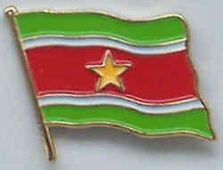 Surinam Country Flag Enamel Pin Badge