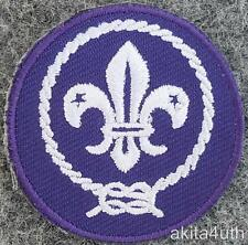 Boy Scouts of America - World Scouting Crest Patch - Cub, Webelo, Venturing BSA