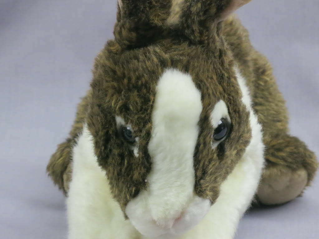 WEBKINZ SIGNATURE DUTCH BUNNY braun Weiß FREE SHIPPING NO CODE PLUSH ONLY TOY