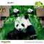 3D-Cubierta-Del-Edredon-Animales-Panda-Cachorro-Gatitos-del-lecho-del-edredon-cubierta-funda-de miniatura 17