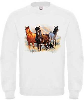 Discreto Felpa In Bianco Con Un Cavalli Animali/natura Motivo Modello Three Horses-iv Modell Three Horses It-it Mostra Il Titolo Originale Ricco E Magnifico