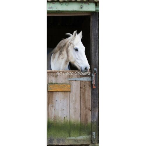 Poster Poster Door Trompe L/'Oeil the Eye Horse in His Box 304 Art Deco Stickers