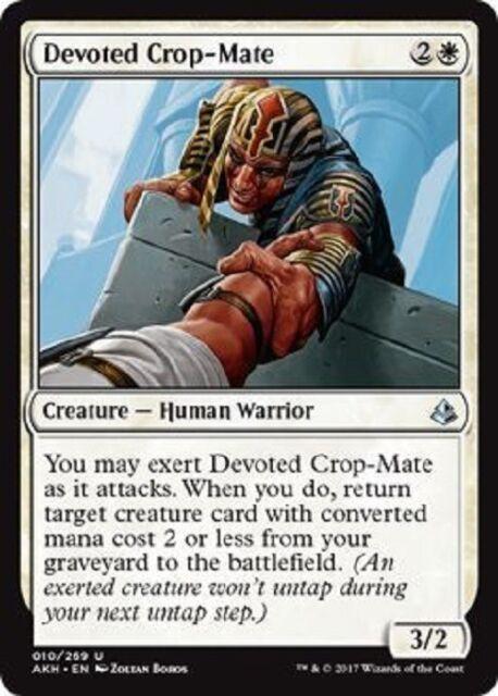 Devoted Crop-Mate uncommon 4x amonkhet MTG Magic The Gathering 4x