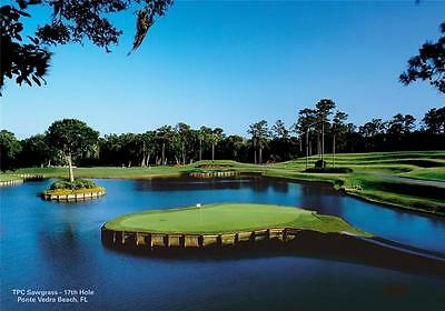 17th Hole TPC Sawgrass Golf Course Giant 1 Piece  Wall Art Poster SP105