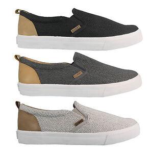 Djinns Slider Fishburn Baskets pour Hommes Slip-On Chaussures Basses D'Été
