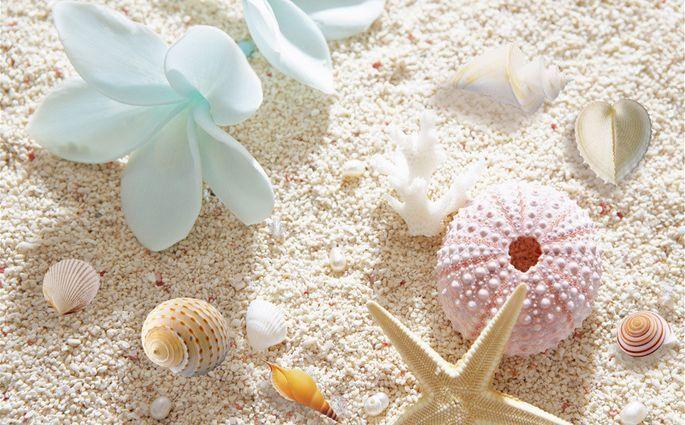 3D Pure Sand Starfish Floor WallPaper Murals Wall Print Decal 5D AJ WALLPAPER