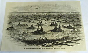 1882-magazine-engraving-PRAIRIE-DOG-CITY-NEAR-PACIFIC-RAILROAD