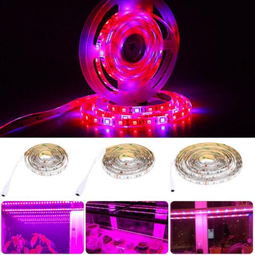 Waterproof Full Spectrum LED Grow Light strip Plant Lamp Blue Red 12V Power