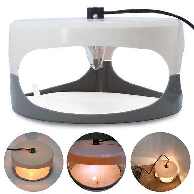 AM_ AM_ LED Light Sticky Flea Trap Pest Control Tool Non Toxic Home Killer Catch | eBay