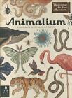 Animalium von Jenny Broom (2014, Gebundene Ausgabe)