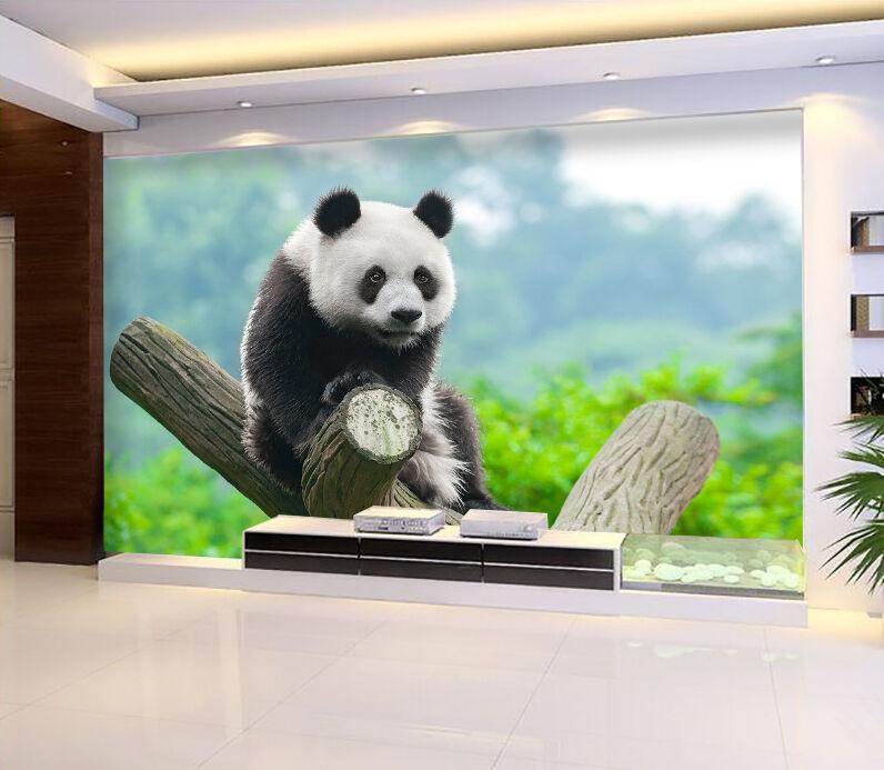 3D Panda Tree Stump Wall Paper wall Print Decal Wall Deco Indoor wall Mural