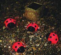 Ladybug Solar 4-pack Red Light Set Solar Garden Display Outdoor Yard Night