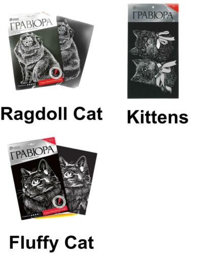 Cat Scratch Art DIY Kit Silver Metallic Effect Engraving Craft Kit Art Wall A...
