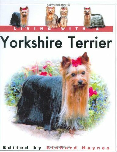 Living with a Yorkshire Terrier,Richard Haynes