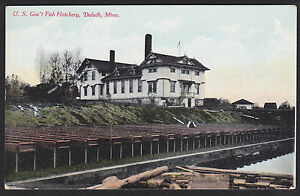 Details about Duluth-Minnesota-U S  Government Fish Hatchery-Antique  Postcard