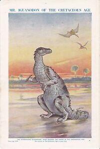 Iguanodon-of-the-Cretaceous-Age-Scarce-print-circa1940s