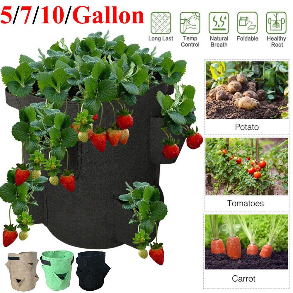 Planting Develop Bag Potato Strawberry Vegetable Planter Bag Pot Backyard Provides US