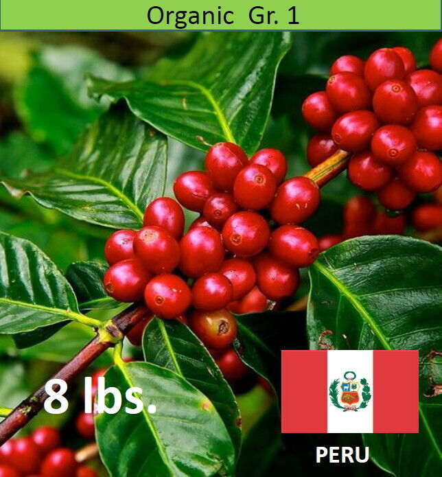 Organic Green Coffee Beans Peru Shb Ep Unroasted 8 Lbs For Sale
