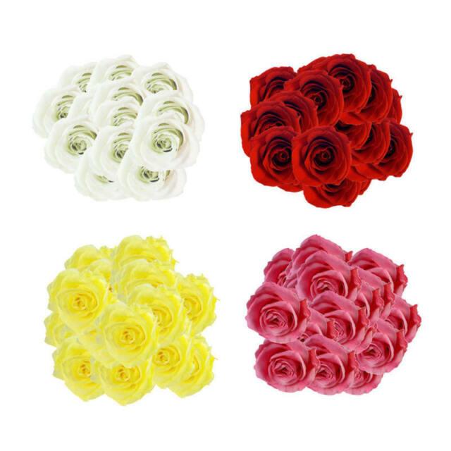 50Pcs Various Artificial Silk Fake Rose Flower Heads Bulk Wedding Party Decor rt