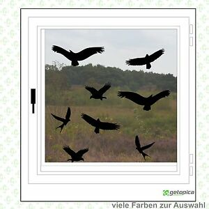 Details Zu Vögel Aufkleber Vogelschutz 8 Stück Wintergarten Fenster Warnvögel